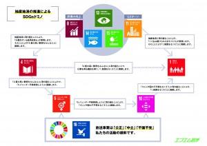 FMI_SDGs_2021